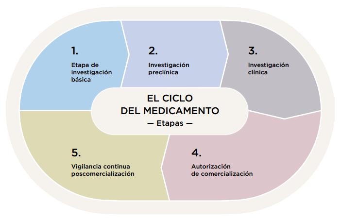el ciclo del medicamento